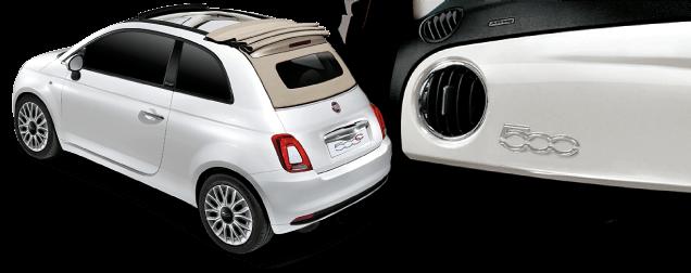 500C Bossa Nova WhiteIvory(ボサノバ ホワイトアイボリー)